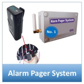 Alarm Pager System